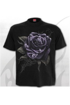 ROSE ANGELS - Tee Shirt Spiral